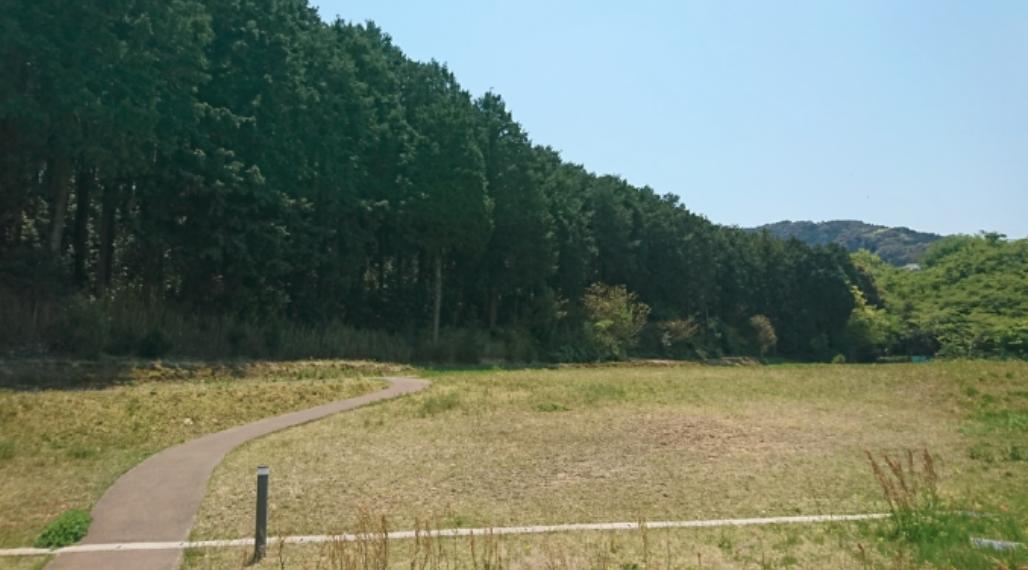 冨田病院 散策路